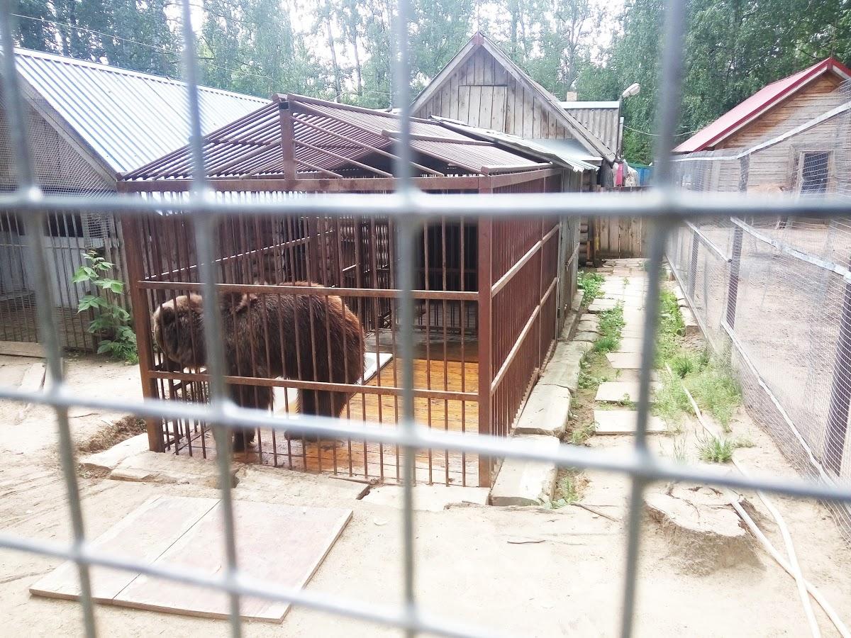 Чудо-остров, Зоопарк