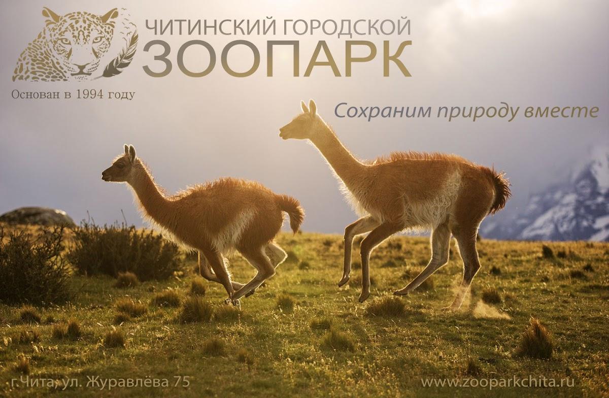 Читинский городской зоопарк