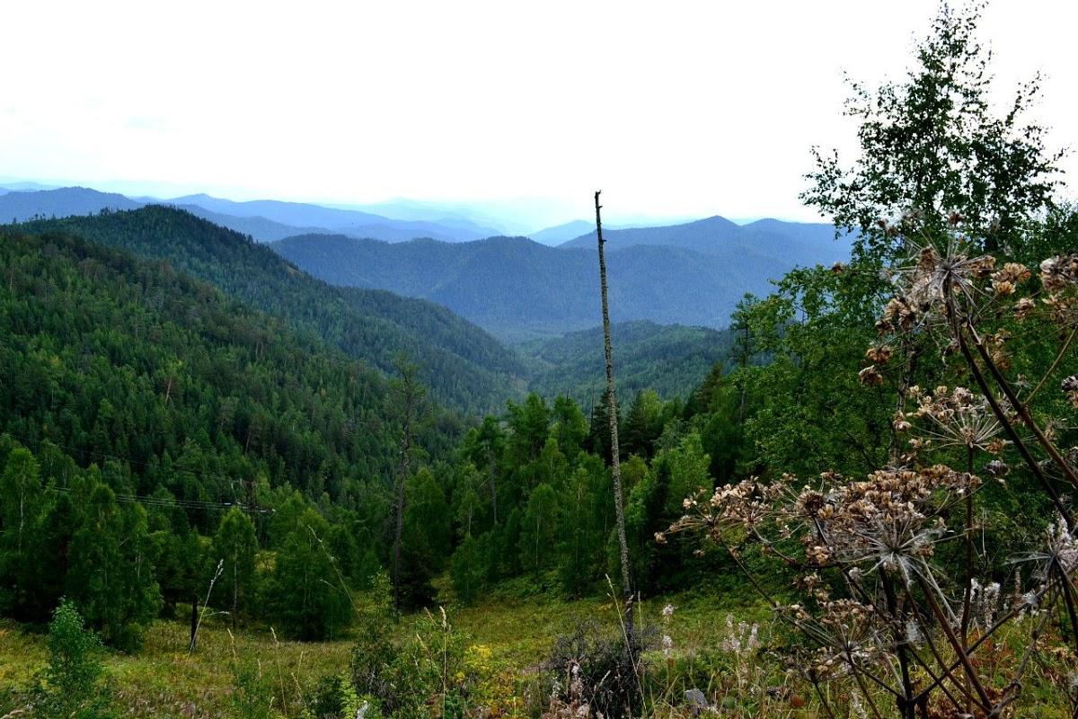 Канжульский перевал