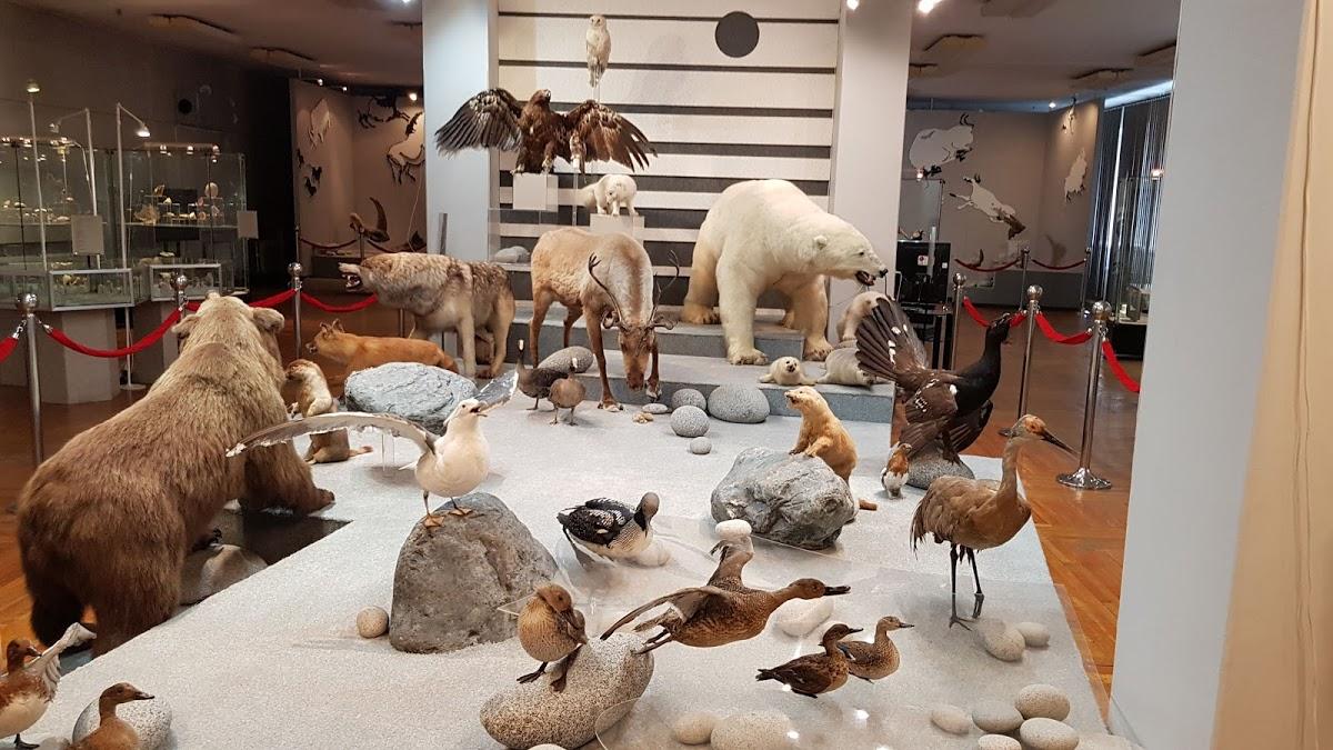 Магаданский областной краеведческий музей