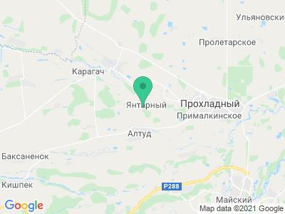 """Карта Термальный источник """"Янтарный"""""""